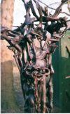 makonde_sculpture_shetani_matambwe_231cm_detail3
